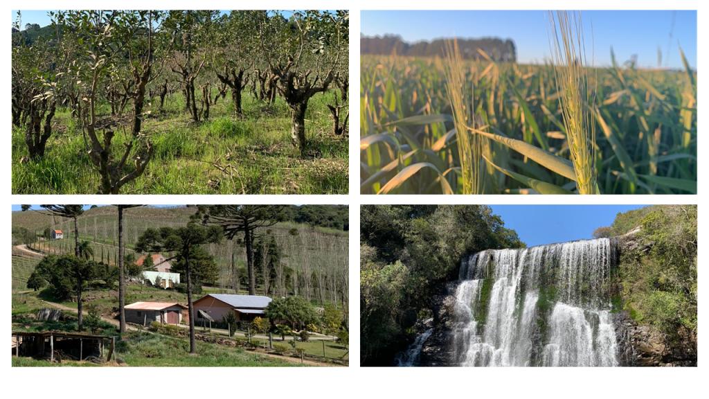 O Estado mais meridional do Brasil vai surpreender você com a beleza e a diversidade das suas paisagens.